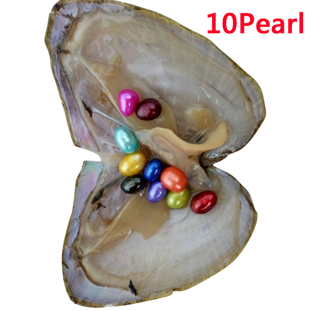 4F3D-6-10-20PCS-Individually-Wrapped-A-koya-Oysters-With-Large-Pearls-6-8mm